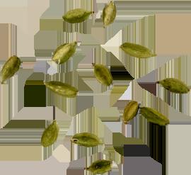 More cardamom seeds used in D. George Benhams Gin