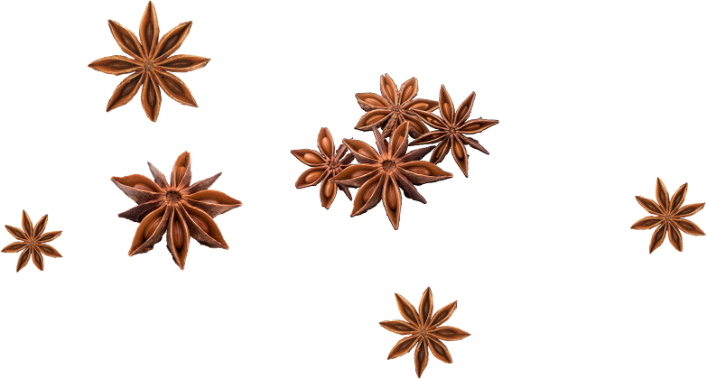 Cluster of star anise seed pods