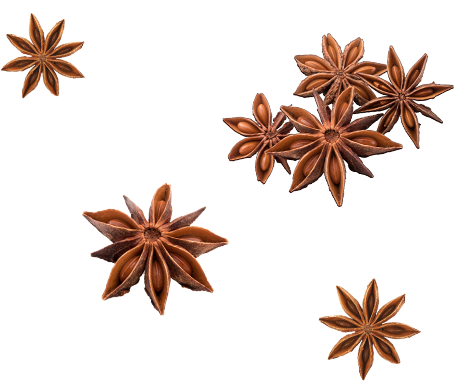 Star anise obtained at sword-point from a prehistoric Chinese pine tree