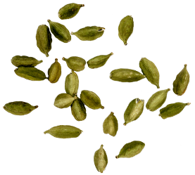 Cardamom seeds rescued from a mob of venomous frogs in the Guatemalan rainforest