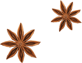 Star anise used to flavor D. Benham's Gin concoctions