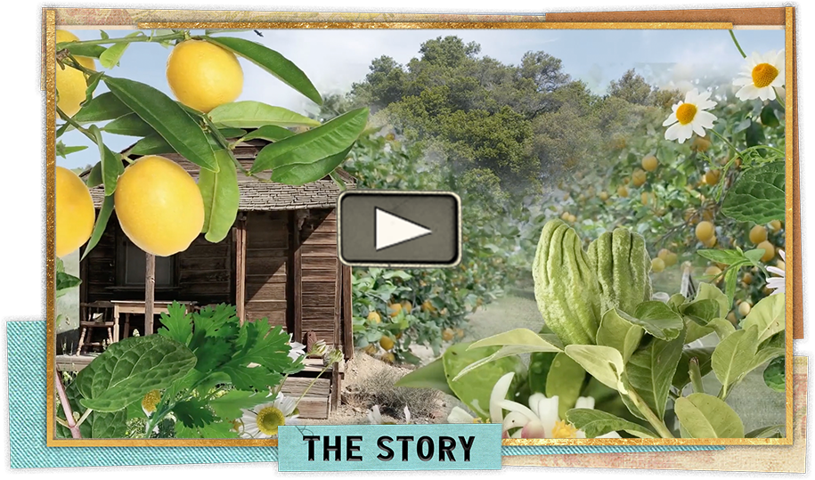 Video frame image to showcase the story of a gin with as much character as the man himself
